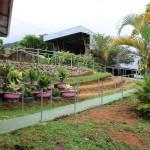 Jardín-Asomobi-2016